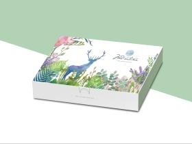 INS风小清新礼盒包装设计