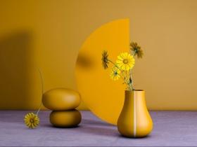 家居花瓶设计