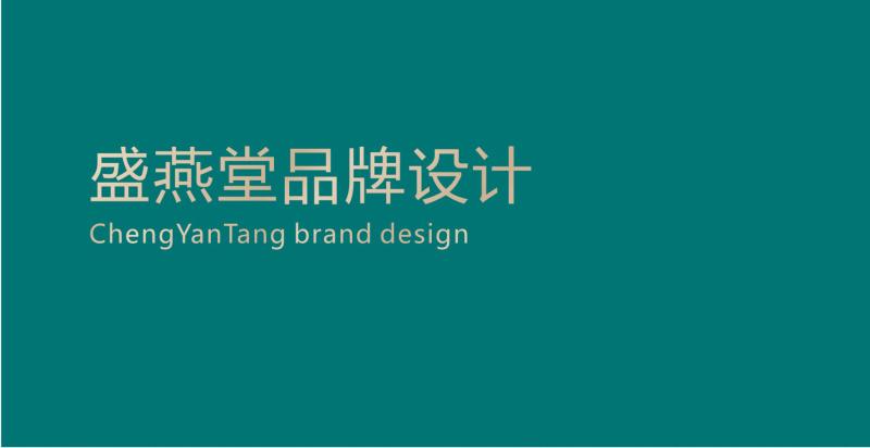 盛燕堂品牌VI视觉设计