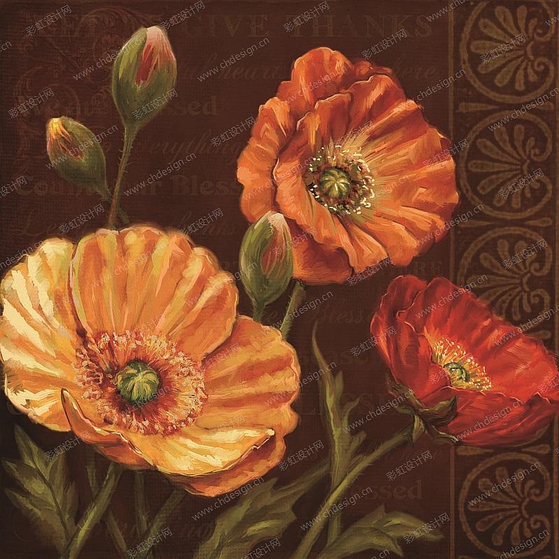 罂粟花图案