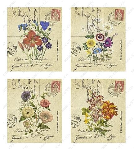 花卉花纸图案