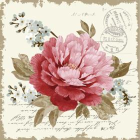 欧美花卉装饰画
