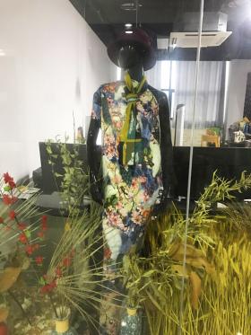 中国风牡丹花树枝孔雀植物木兰花