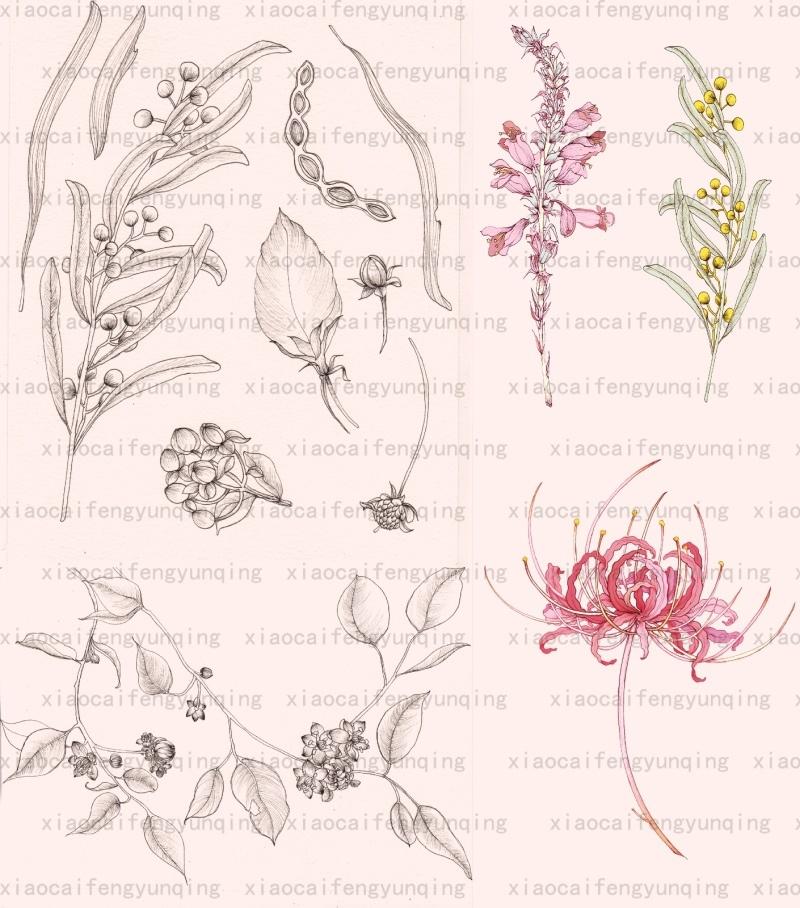 印花围巾丝巾设计