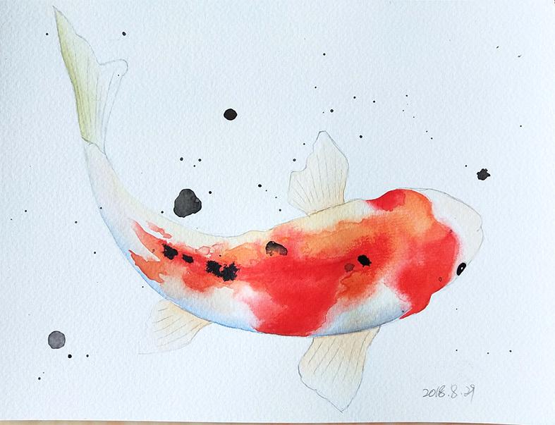 手绘鲤鱼富贵吉祥图