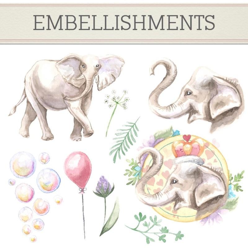DaisyTrail大象的回忆