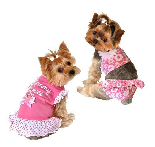 沃尔玛和Ross的宠物服装