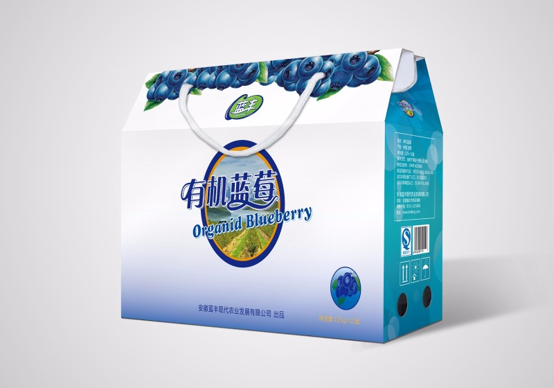 蓝莓水果包装设计