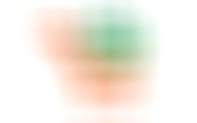 林山采食logo