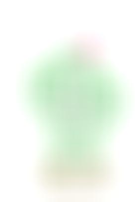 仙人掌亚克力霓虹灯饰设计
