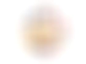 歐式簡約家用印花盤子—(熱帶植物+獵豹)