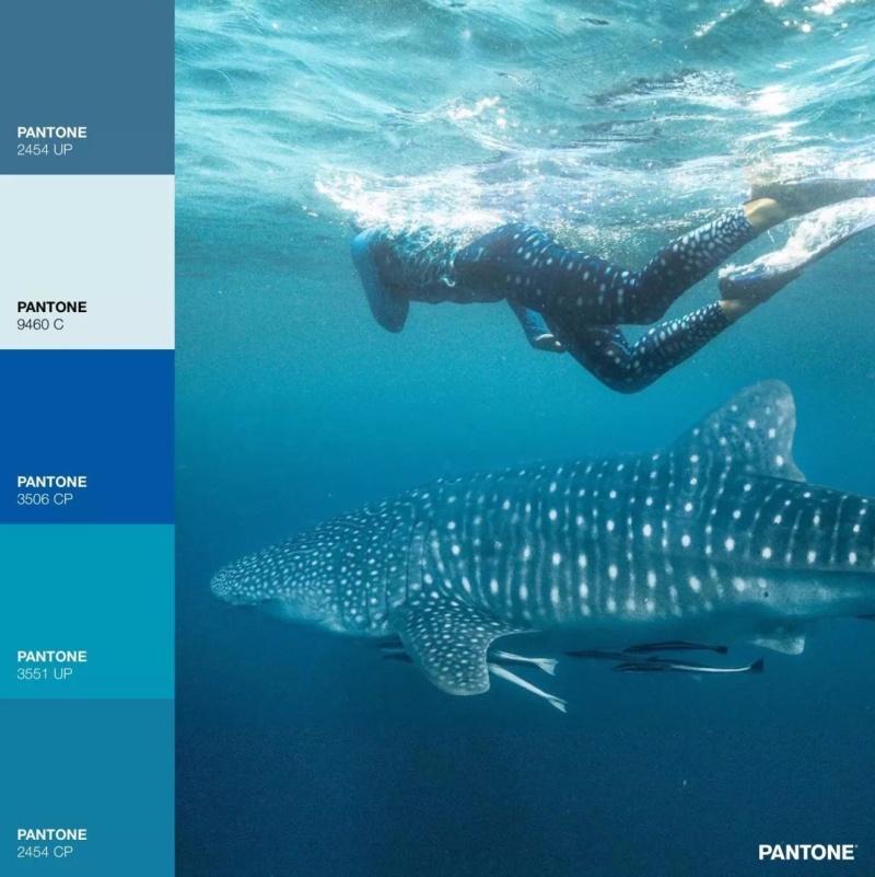 海洋元素在文創中的應用