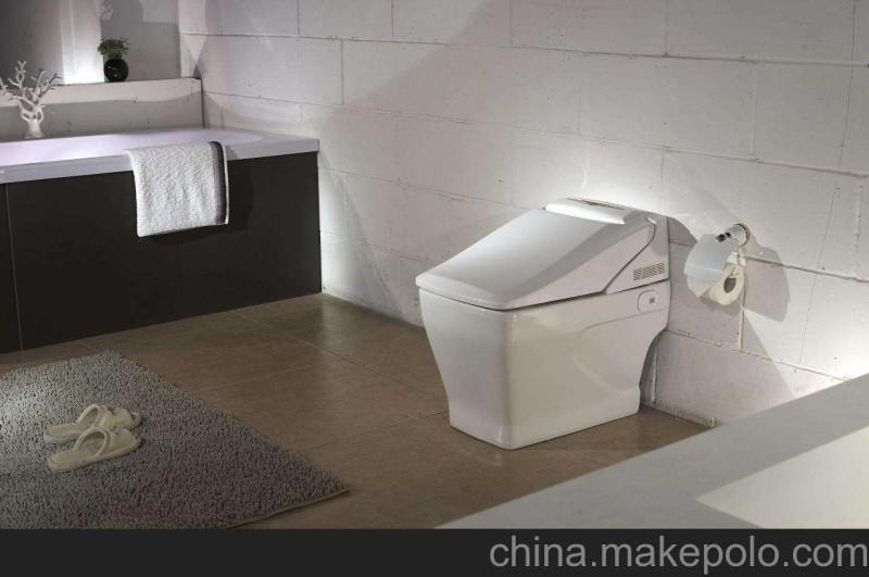 卫浴陶瓷之马桶