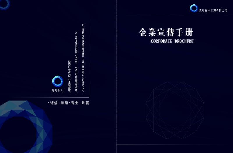 上海隆陪财行VIS设计及网站设计建设