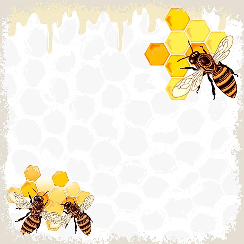 蜜蜂动图矢量图