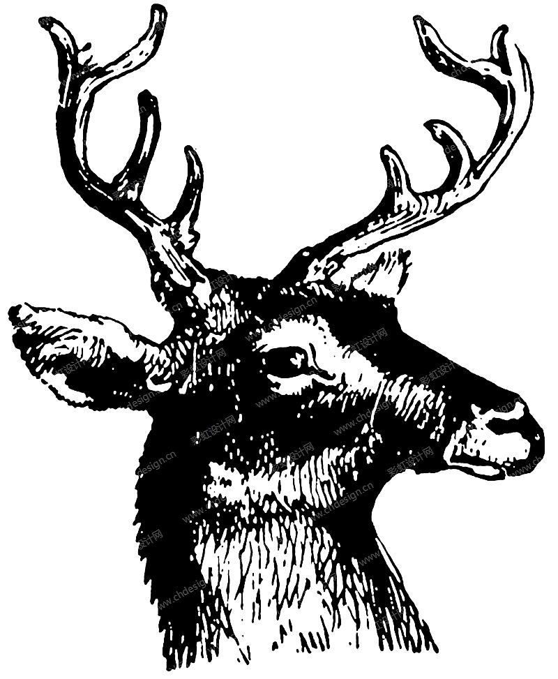 圣诞麋鹿头黑白线条图案-设计案例_彩虹设计网