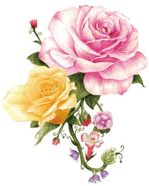 手绘原创花卉图案-设计案例_彩虹设计网