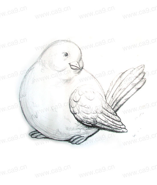 小鸟素描简笔画